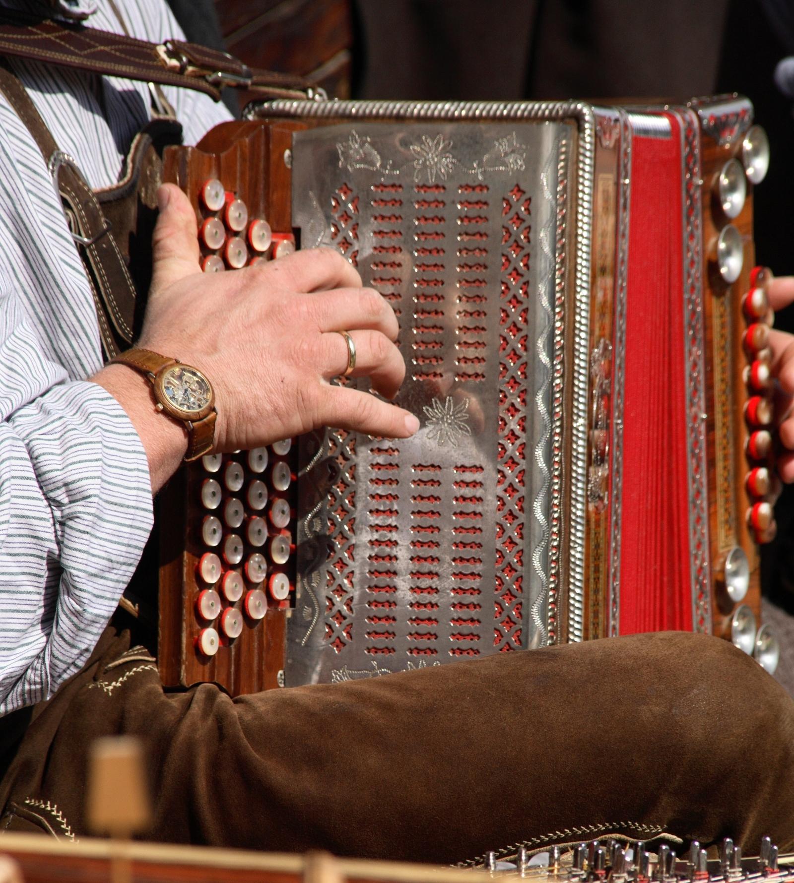 Nahaufnahme Harmonikaspieler